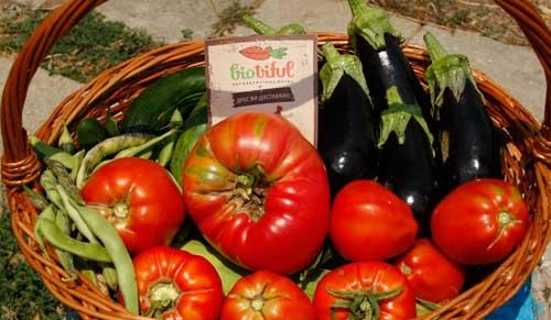 Свежи продукти от градината